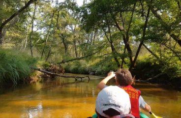 Séjours découverte de la rivière Leyre en canoë avec Nicolas